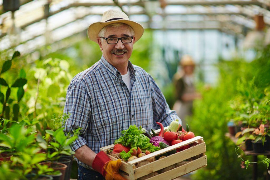 Farmer in green-house